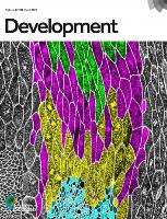 Journal cover: Development