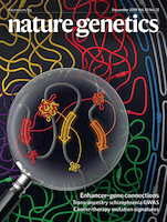 Whole-genome deep-learning analysis identifies contribution of noncoding mutations to autism risk